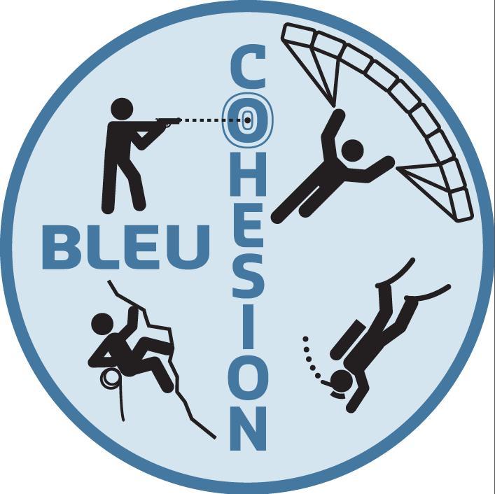 Bleu Cohésion - Vols en soufflerie - 50% de remise